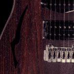Bedini - Strumenti Musicali - Liutaio a Modena Ferrara e Rovigo - bedini-guitar-t-hill-rosewood-3226-150x150 T.HILL MODERN