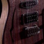 Bedini - Strumenti Musicali - Liutaio a Modena Ferrara e Rovigo - bedini-guitar-t-hill-rosewood-3236-2-150x150 T.HILL MODERN